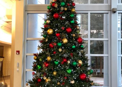 Gallery-Christmas-Lights_0000_Layer 5