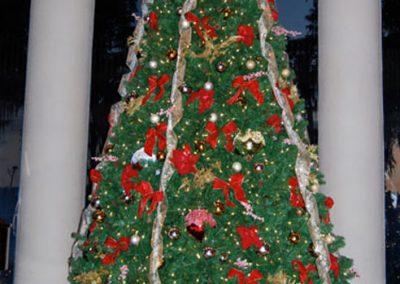 Gallery-Christmas-Lights_0004_Layer 1