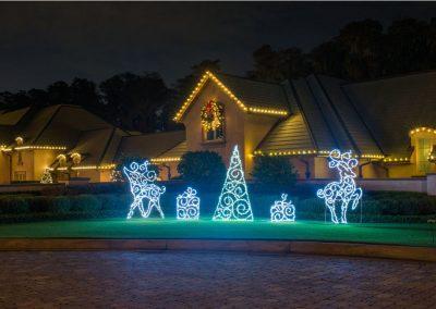Gallery-Christmas-Lights_0008_Layer 26