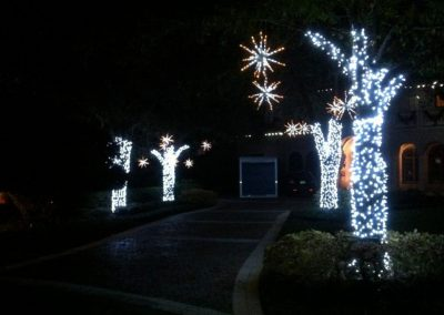 Gallery-Christmas-Lights_0011_Layer 23