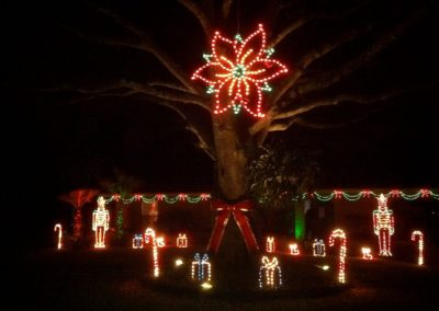 Gallery-Christmas-Lights_0012_Layer 22