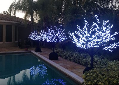 Gallery-Christmas-Lights_0019_Layer 15
