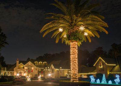 Gallery-Christmas-Lights_0026_Layer 8
